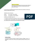 mecanica fluidos 2.4