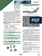 Algas Azuis (ou Cianofíceas) ALGAS. Classificação.pdf