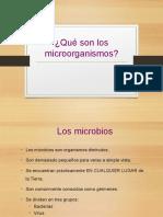 MICROORGANISMOS [Autoguardado].pptx