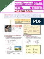 Estudio-de-la-Morfología-Para-Primer-Grado-de-Secundaria