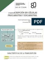 Transcripción_Jiménez