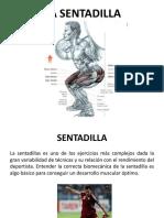 Conceptos de la Sentadilla