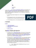 Glucogenosis