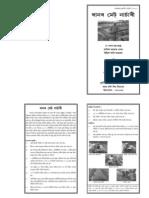 Asomia Brochure