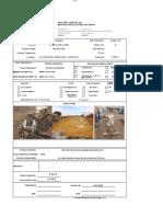 MPI Report 008 Travelling Block E-5071