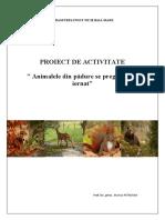 Proiect de activitate