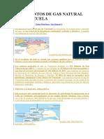 YACIMIENTOS DE GAS NATURAL EN VENEZUELA..docx