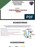 Unidad 8 Flujo de Energia y Ciclo de la materia PDF.pdf