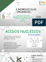 Las 4 Biomoléculas - Ácidos Nucleicos.pptx