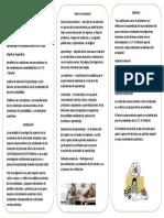 TRIPTICO DE  ECONOMIA.docx