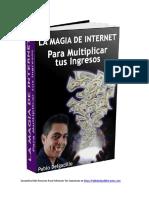 La magia de internet.pdf