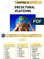 309900824-Intercultural-Relations-ppt.ppt