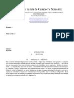 ARTICULO- Salida de Campo VI este no es .pdf