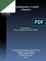 infograma contaminacion y medio ambiente.ppt