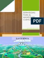 ESTRATEGIAS PARA EL MANEJO DE CUENCAS.