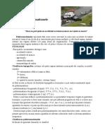 curs_5_politraum.doc