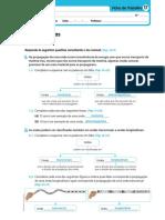 dpa8_dp_ficha_trabalho_m17_propostas_resolucao
