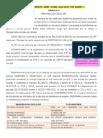 Resumen MODULO 3- Biologia. imprimir