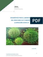 informe-diagnostico-sars-cov-2.pdf