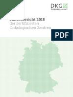2018_jahresbericht-oz-de-A1_170720 V2.pdf