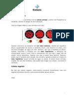 celula_animal_e_vegetal.pdf