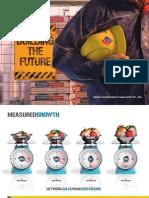 2008 DMP Annual Report