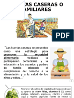 HUERTAS CASERAS O FAMILIARES