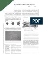 Taller-Transporte-Celular (1).pdf
