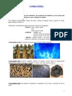 136738112-referat-combustibili.doc