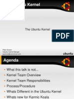 SELF Kernel Talk