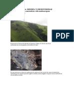 el gran dilema. minería vs biodiversidad