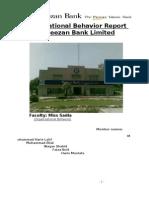 Meezan Bank,Organizational Behavior [Final Project]