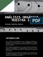 ANÁLISIS ORGÁNICO MUESTRA 2