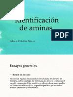 Identificación de aminas