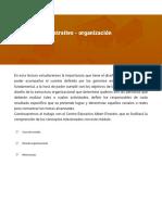 Proceso administrativo - organización.pdf