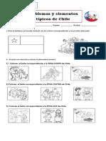 Guía emblemas nacionales 1° basico (1)