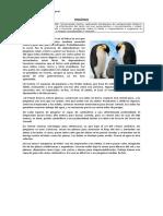 Texto expositivo organizador.docx