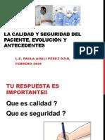 tema 1 Calidad y seguridad del paciente.pdf