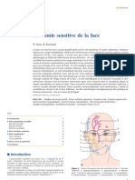 Anatomie Sensitive de La Face