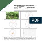 TCLL132N.pdf