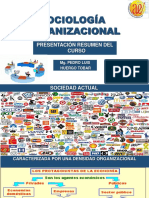 0 PRESENTACIÓN DEL CURSO SOCIOLOGIA DE ORGANIZACIONES.pdf
