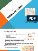 Sistema ENDOCRINO 2019.pptx