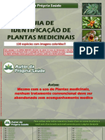 Guia Identificação de Plantas Medicinais_Alunos APS.pdf