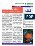 btta_123.pdf