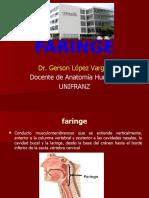 FARINGE ACTUALIZADO 06.11.16.pptx