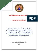 Tesis Isabel Garrido Martín.pdf