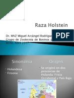 P01._Raza_Holstein