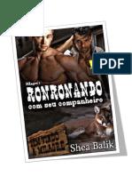 Milagre 01 - RONRONANDO COM SEU COMPANHEIRO - Revisão GLH 2017