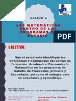 LAS MATEMÁTICAS DENTRO DE LOS PROGRAMAS DE ESTUDIO