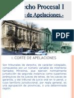 5.- Órgano Jurisdiccional Corte de Apelaciones (Unidad 4, Procesal I).ppt